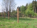 Forestry fencing and farm fencing