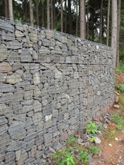 Gabions in the forest? Why not!